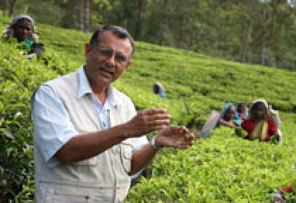 Guide Francophone Sri Lanka © Ceylon Tea Trails